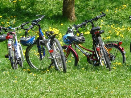 bicycles_bike_family_outing_271800