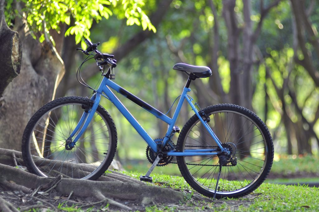 bicycle-in-green-park